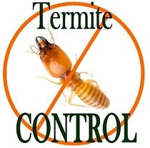 A logo of Anti-Termite Control with a Text